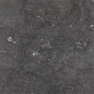 Fossil Grey Marble