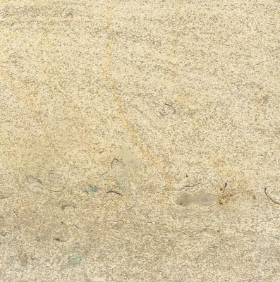 Beauval Rubane French Limestone Floors of London